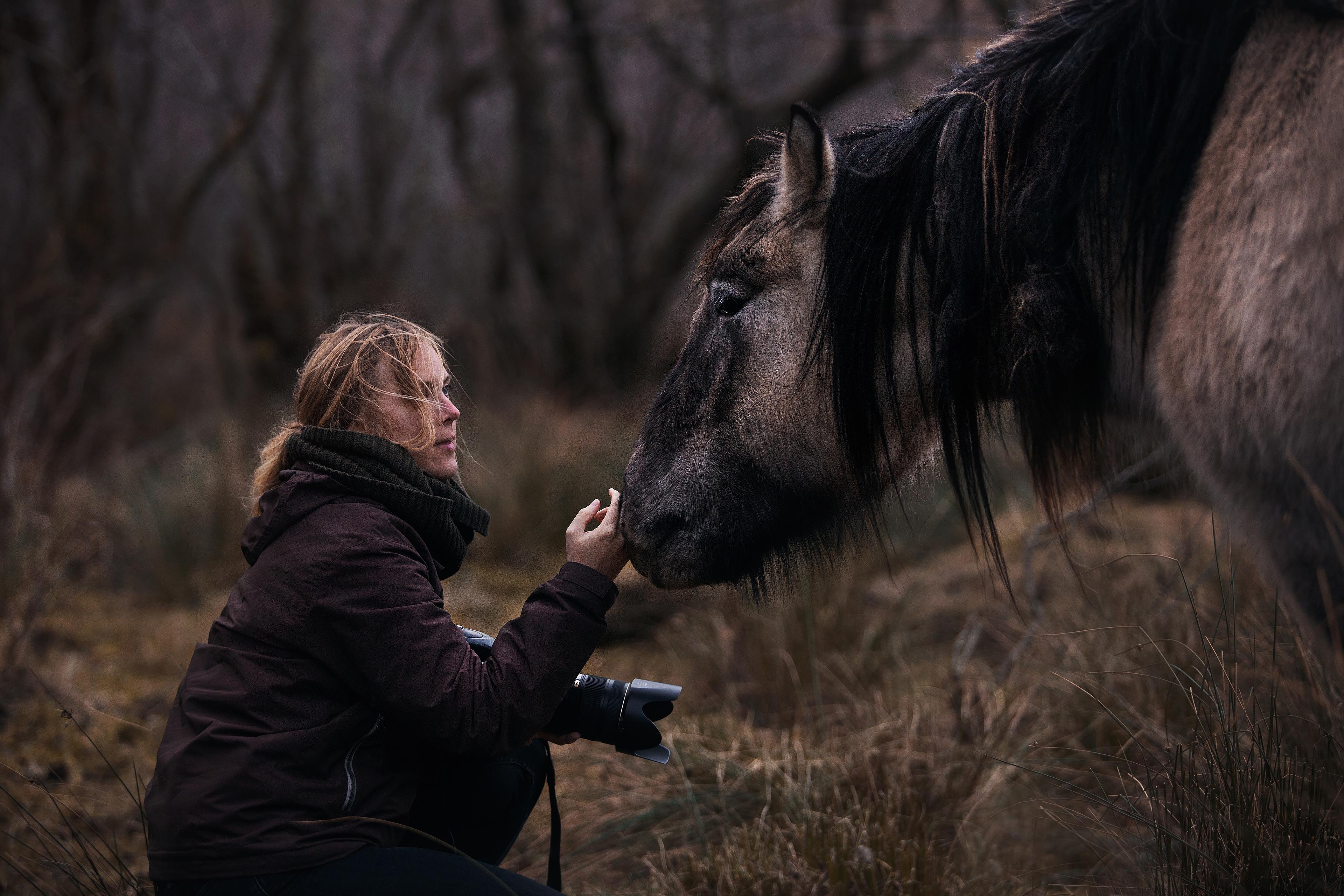 Malin Wengdahl Equine by Wengdahl Hästfotograf Horse photographer Equine photographer